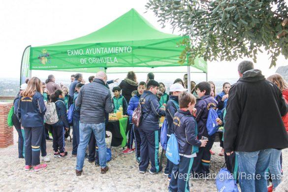 Los escolares de Orihuela reforestan el monte de San Miguel 10