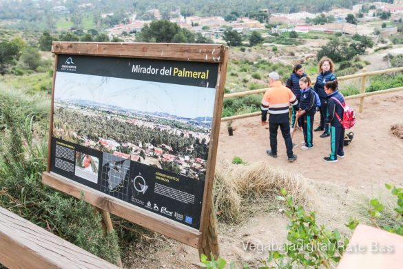 Los escolares de Orihuela reforestan el monte de San Miguel 19