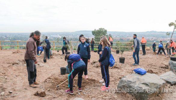 Los escolares de Orihuela reforestan el monte de San Miguel 22