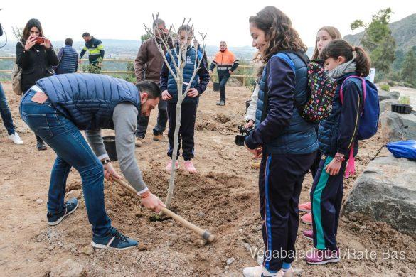 Los escolares de Orihuela reforestan el monte de San Miguel 23