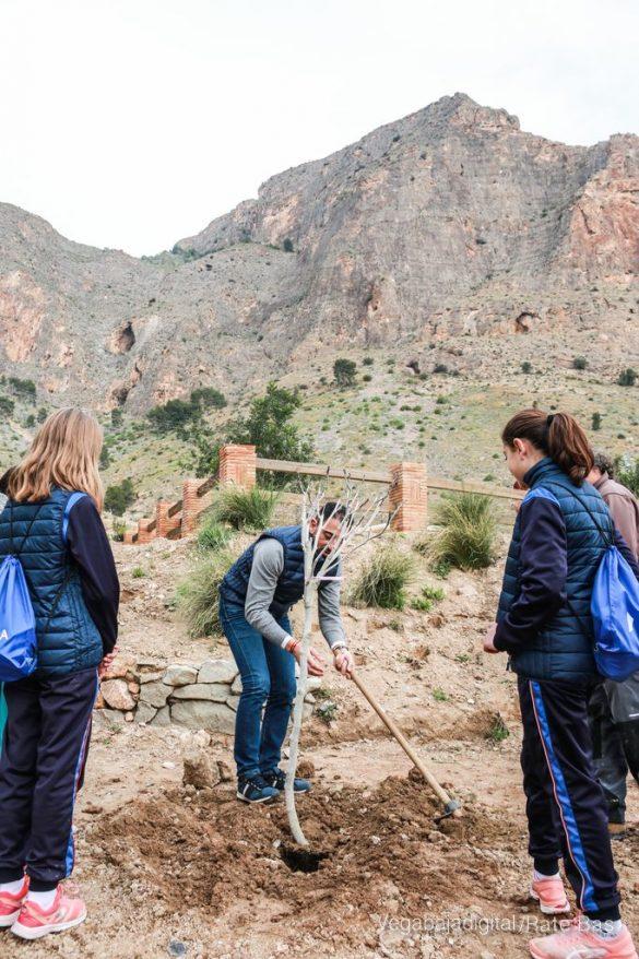 Los escolares de Orihuela reforestan el monte de San Miguel 24