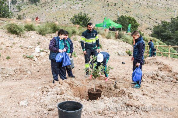 Los escolares de Orihuela reforestan el monte de San Miguel 26