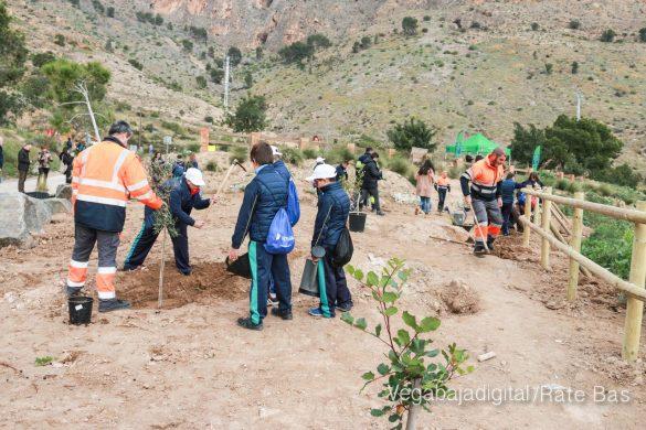 Los escolares de Orihuela reforestan el monte de San Miguel 28