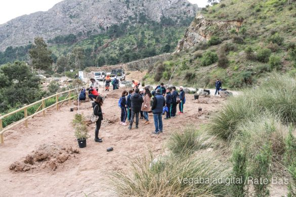 Los escolares de Orihuela reforestan el monte de San Miguel 32