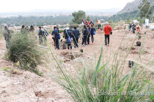 Los escolares de Orihuela reforestan el monte de San Miguel 33