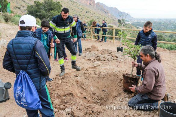 Los escolares de Orihuela reforestan el monte de San Miguel 36