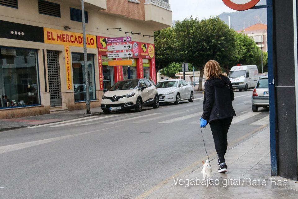 ¿Puedo pasear a mi perro durante el 'toque de queda'? 6