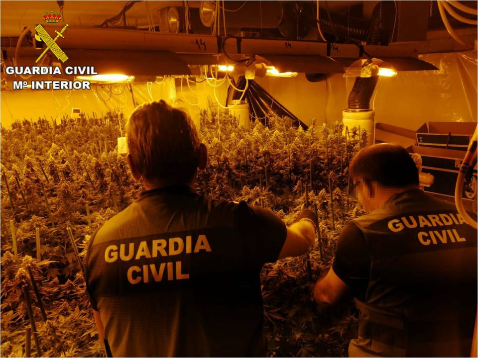 Desmantelada una banda que cultivaba marihuana indoor con suministros clandestinos 6