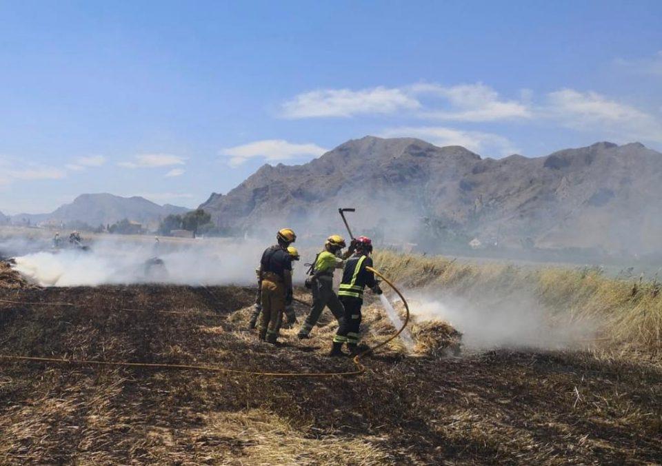 Los bomberos intervienen en un complicado incendio en Callosa 6