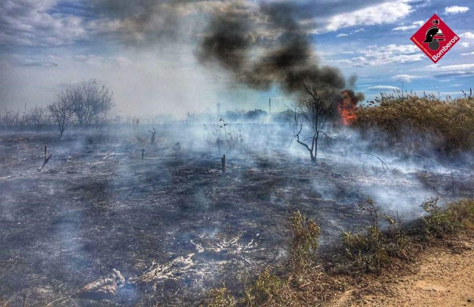 Los bomberos extinguen un incendio en la huerta de Rojales 6