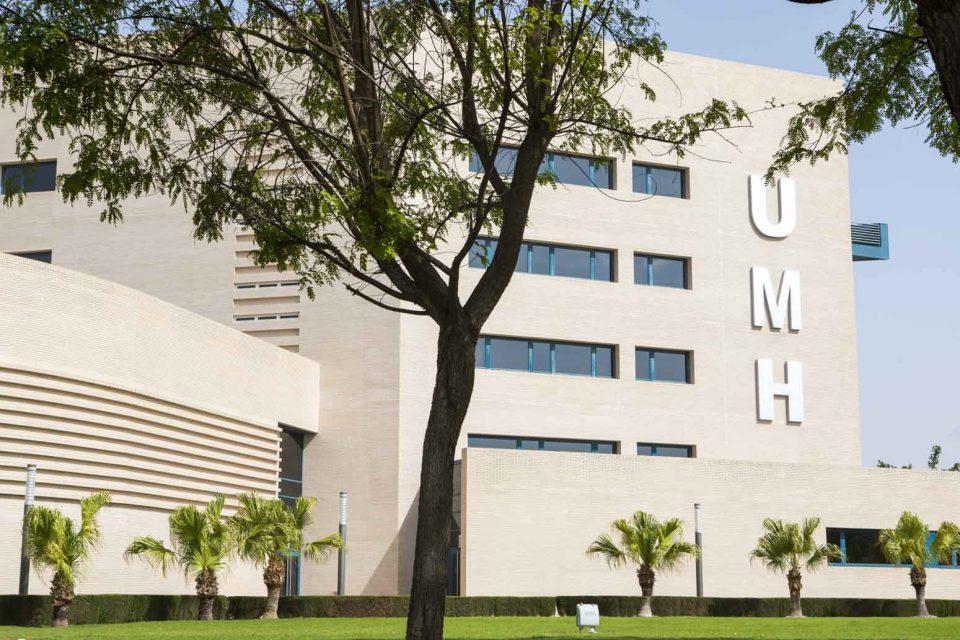 La UMH incrementa las preinscripciones para el próximo curso en un 20% 6