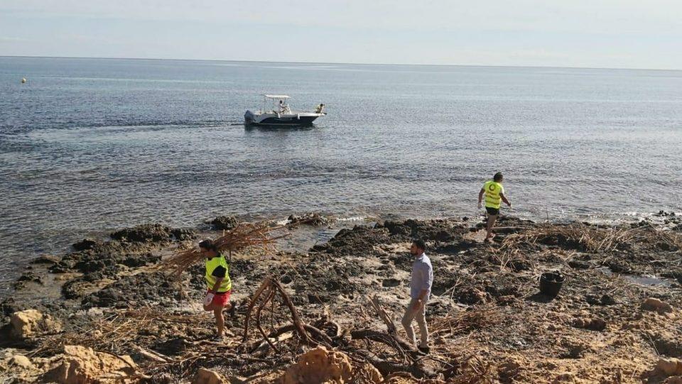 Orihuela recoge más de 300 toneladas de cañas en la costa por la gota fría 6