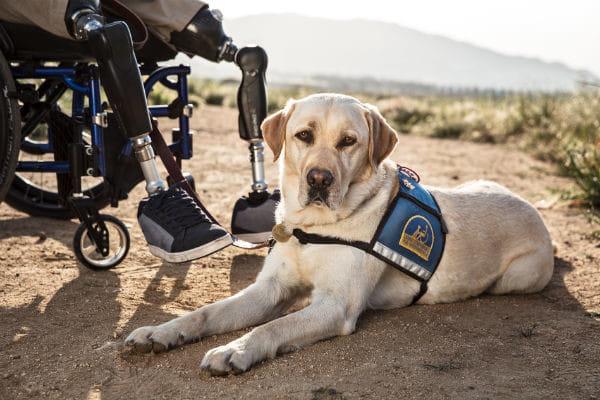Intentan echar de Cala Mosca a un niño con necesidades educativas especiales con su perro de Asistencia 6