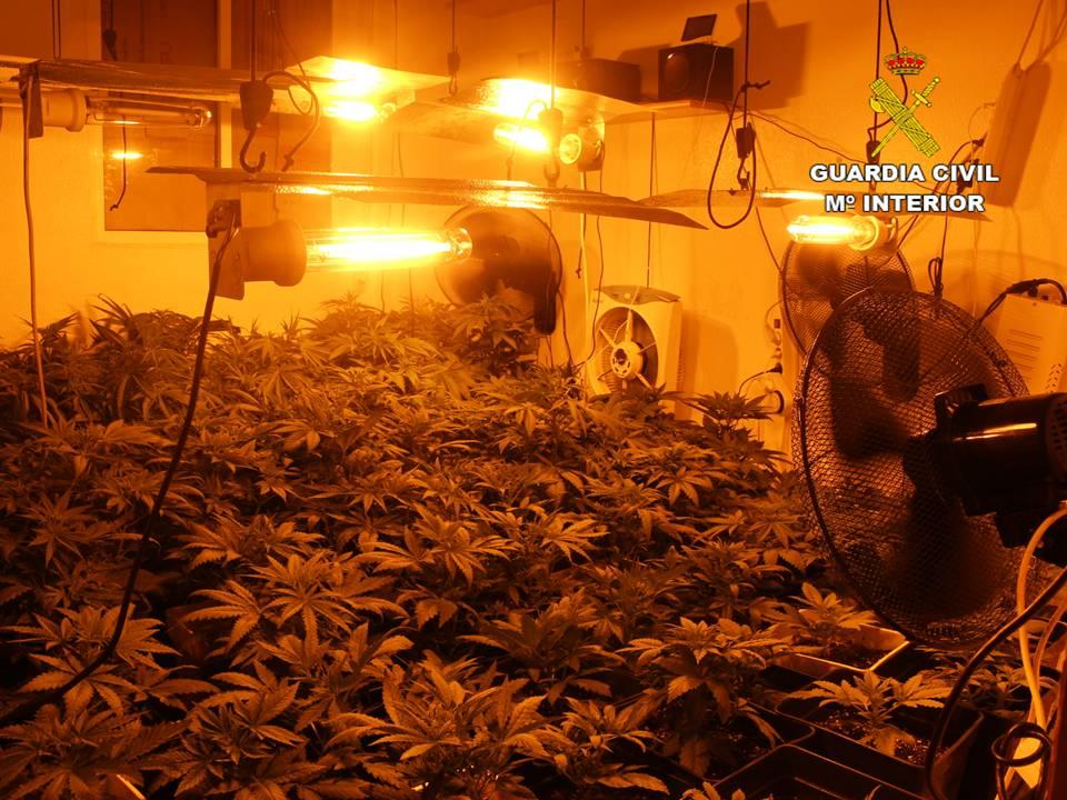 Cae un punto de venta de droga a menores en Rojales 6