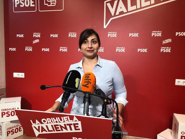 PSOE pide explicaciones al gobierno sobre la hoja de ruta para la vuelta a la normalidad 6