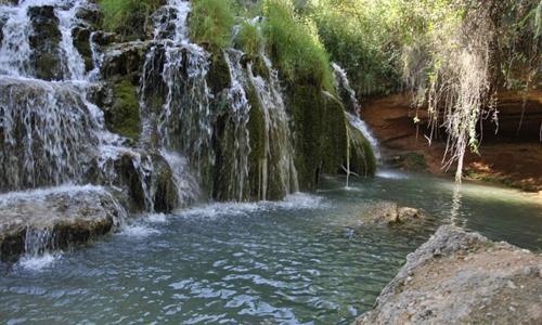 La Vega Baja se beneficiará de las ayudas provinciales para la mejora de zonas verdes 6