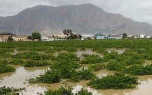 Cambiemos Orihuela denuncia la construcción de una gasolinera en una zona inundable 7