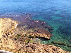 El Instituto de Ecología Litoral destaca la calidad ambiental de las aguas del litoral de Orihuela 7