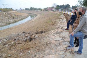 La CHS ejecutará un proyecto en el río Segura aguas abajo de Rojales para eliminar el cañaveral 9