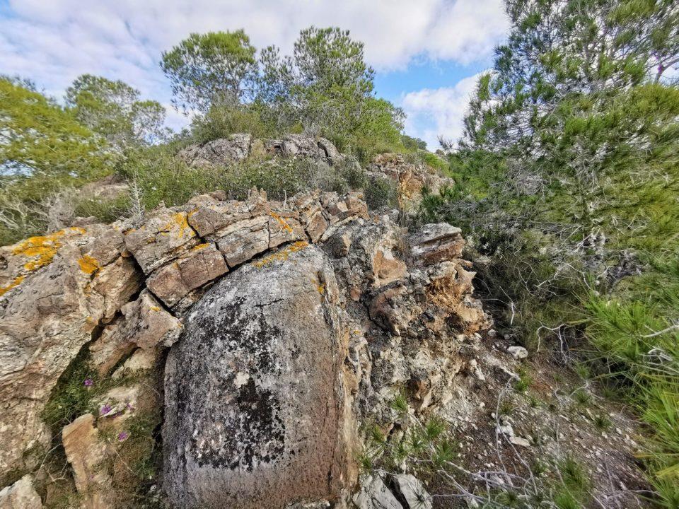 El Pleno aprueba el proyecto de ordenación del monte de Benejúzar 6