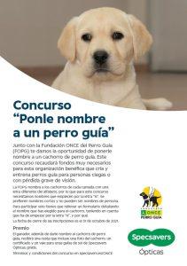 """Specsavers Ópticas lanza el concurso """"Ponle nombre a un perro guía"""" 9"""
