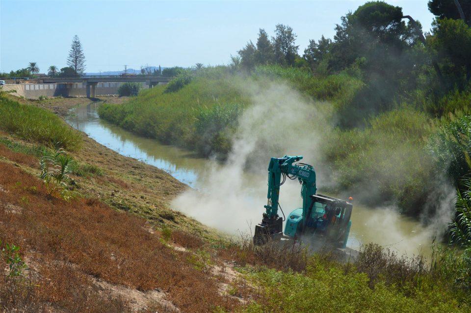 Limpieza de cañas y carrizo en el tramo del río entre Almoradí y Algorfa 6