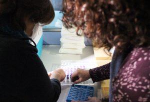 La Comunidad Valenciana inicia la vacunación contra la covid-19 13