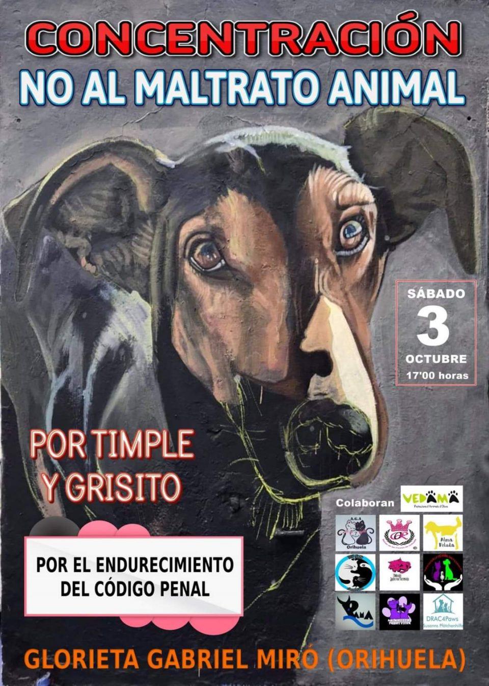 Orihuela acoge una concentración contra el maltrato animal 6