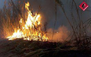 Orihuela amanece con un incendio de cañas junto a la autovía 8