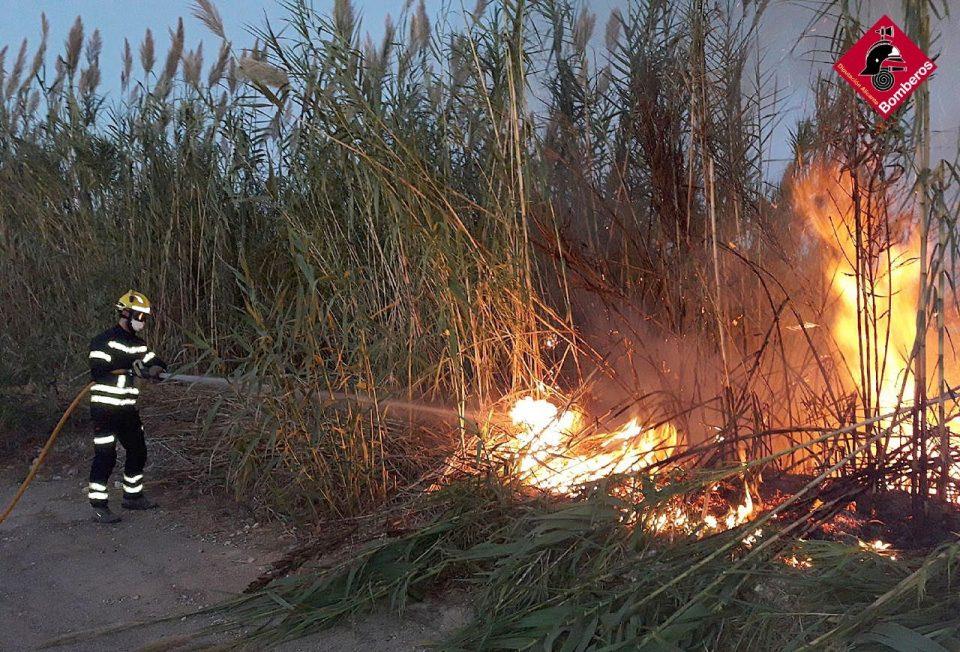 Orihuela amanece con un incendio de cañas junto a la autovía 6