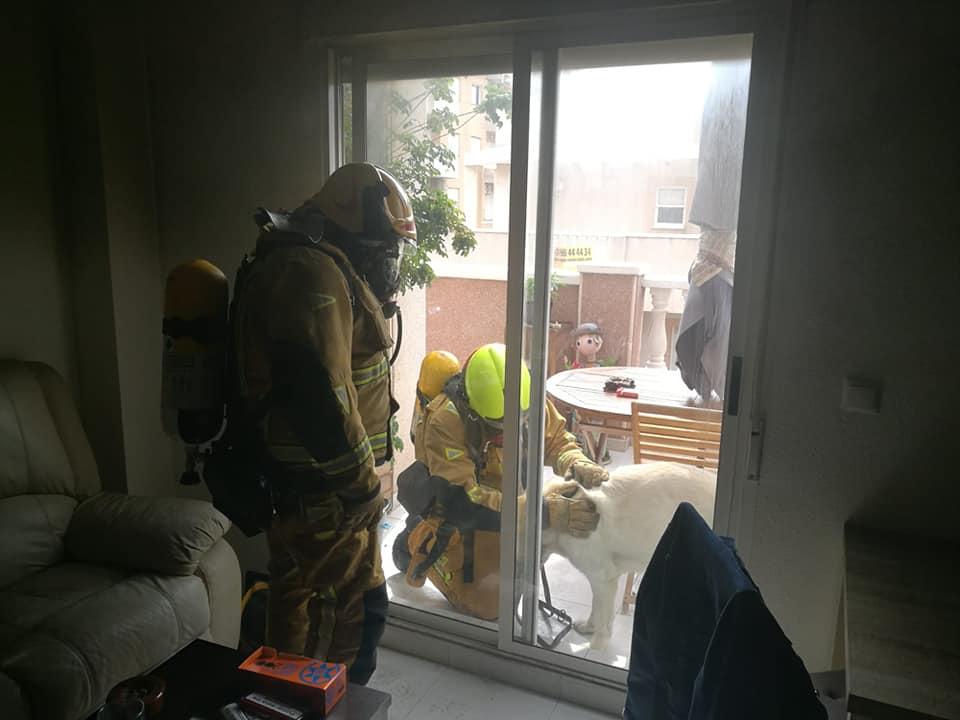 Los bomberos rescatan a un matrimonio y sus mascotas en un incendio en Torrevieja 6