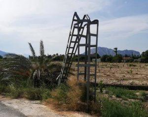 El viento derriba palmeras de grandes dimensiones en Jacarilla y Torrevieja 7
