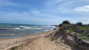 Aparece el cadáver de una ballena en una playa de Guardamar 8