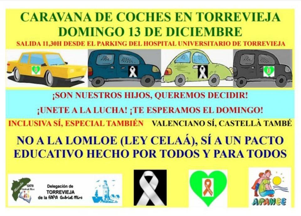 La FAPA Gabriel Miró y APANEE convocan una manifestación en contra de la ley Celaá 6