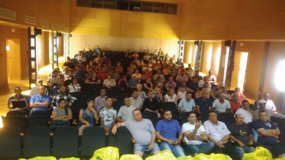El Ayuntamiento de Orihuela contrata a 121 desempleados agrícolas 6