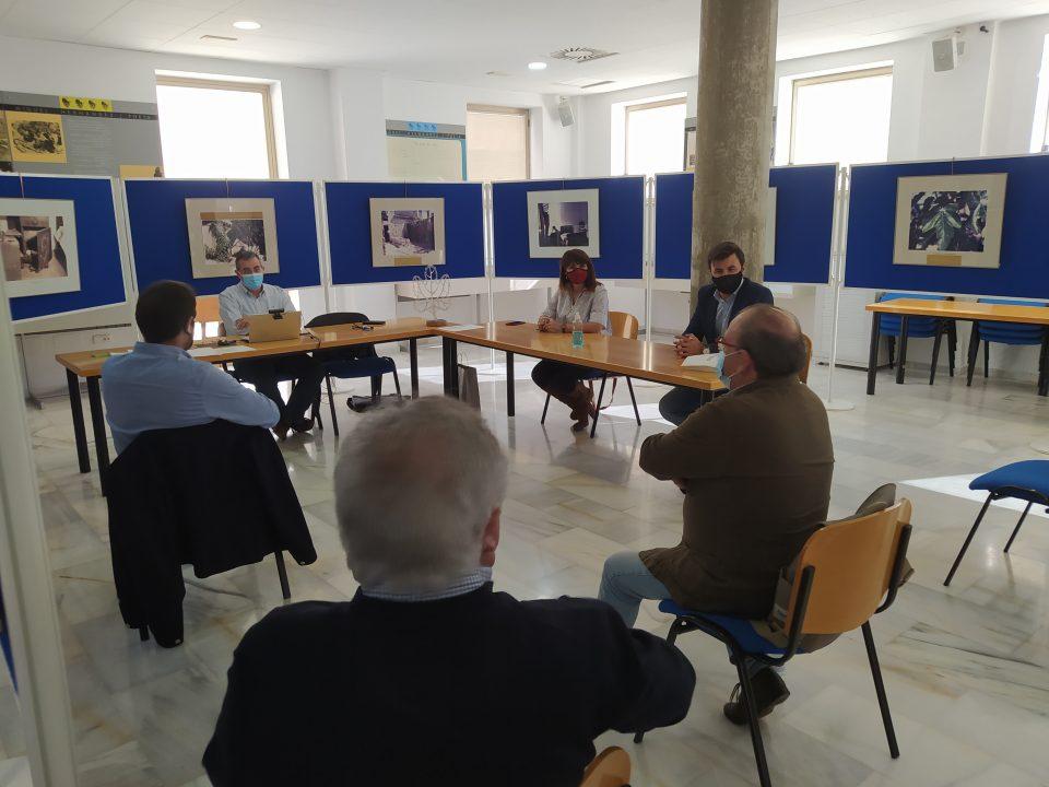 La diputada de Cultura se reúne con la Fundación Cultural Miguel Hernández 6