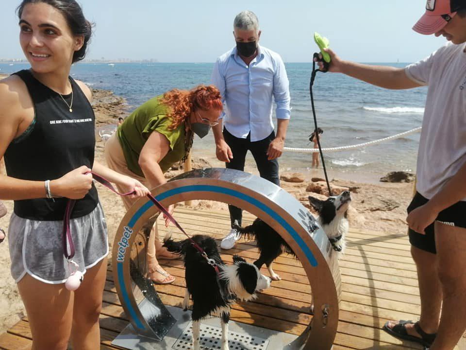 La playa canina de Torrevieja incorpora una ducha especial para mascotas 6