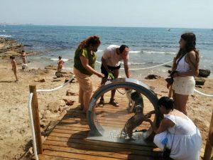 La playa canina de Torrevieja incorpora una ducha especial para mascotas 7
