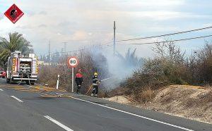 Declarado un incendio en un vivero de Albatera con indicios de haber sido provocado 8