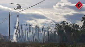 Declarado un incendio en un vivero de Albatera con indicios de haber sido provocado 9