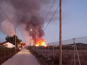 Un incendio arrasa 5.000 m2 de huerto de palmeras en Bigastro 10