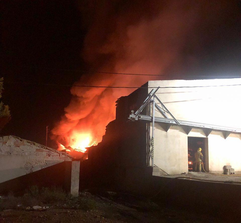 Un incendio calcina miles de animales en una granja avícola de Redován 6