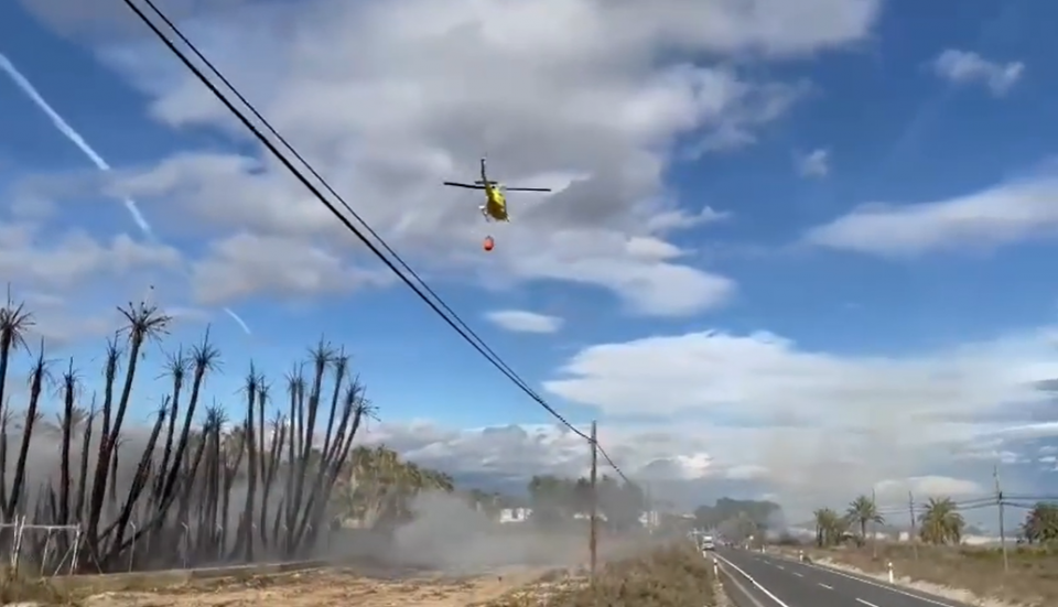 Declarado un incendio en un vivero de Albatera con indicios de haber sido provocado 6