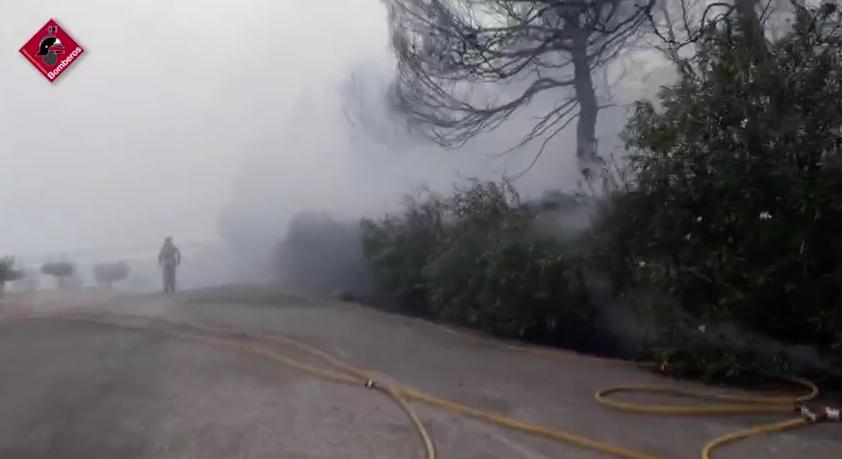 Controlado un incendio forestal en San Miguel de Salinas 6