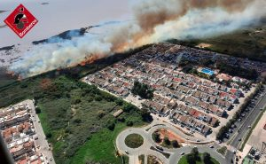 Incendio importante en el Parque Natural de Las Lagunas de Torrevieja 8