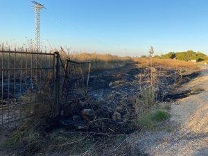 Esto es lo que pasa cuando lanzas una colilla: 200m2 incendiados en San Fulgencio 7