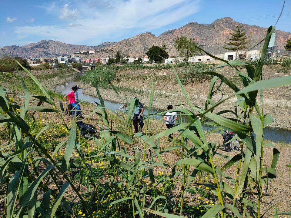 Varios voluntarios retiran 500 Kg de plásticos en una margen del río a su paso por Orihuela 6