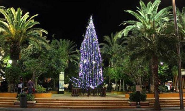 Torrevieja llega tarde para colocar las luces de Navidad 6