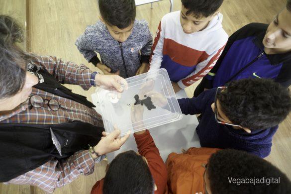 Los niños y niñas de Granja aprenden y se divierten con el MUDIC 17