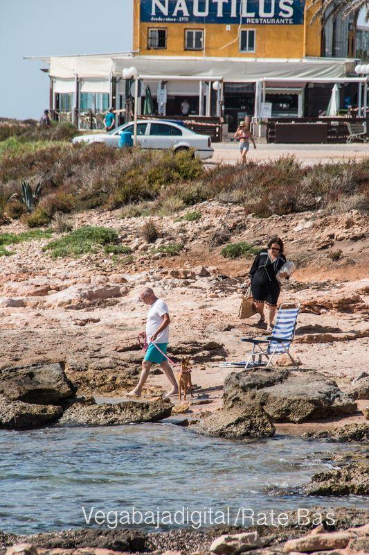 Así es la nueva playa canina de Torrevieja 9